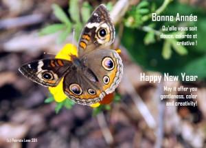 Happy New Year   Bonne année